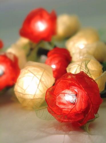 Rose Leaf Lights red